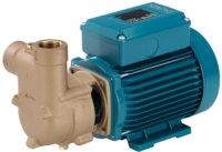 Calpeda BCAM Self Priming Pump (1PH)