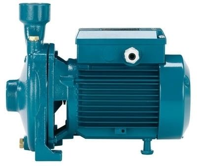 Calpeda NMM 10/AE Threaded End Suction Pump - 1 Phase
